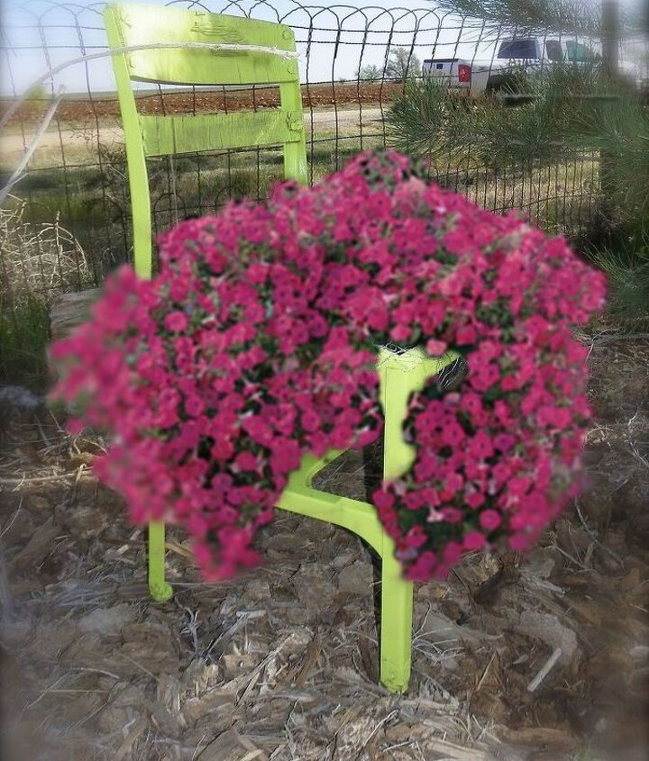 This lime green chair has been in my yard for quite sometime as a planter.