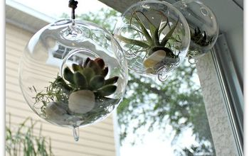 Make a Easy and Versatile Terrarium in No Time Flat