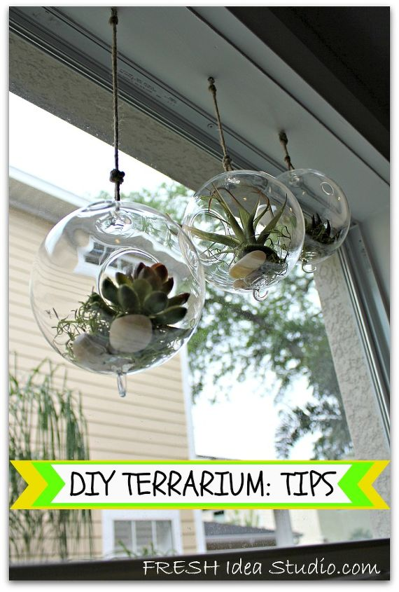 make a easy and versatile terrarium in no time flat, crafts, gardening, succulents, terrarium