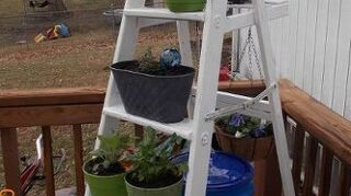 , The herb ladder consists of parsley cilantro sage dill greek oregano and rosemary The hanging basket in the back is full of pansies I can t wait to add more After a rain or in the morning with the fresh dew so fragrant