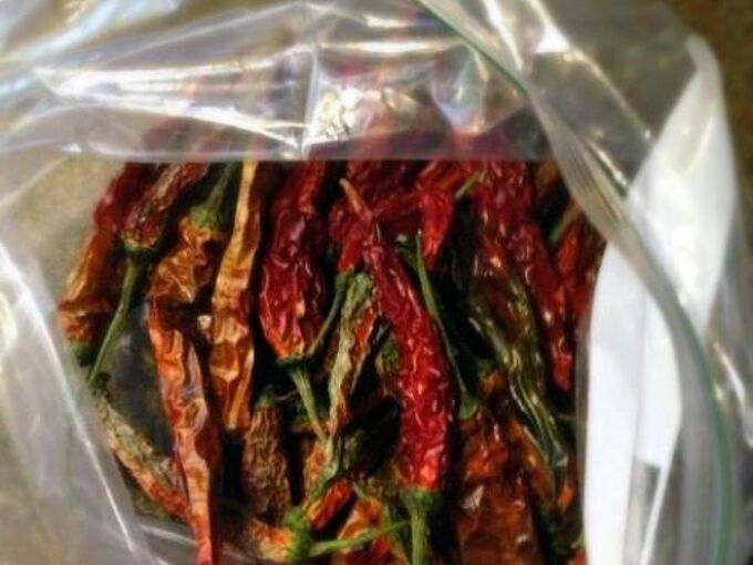 garden pepper spray an all natural alternative to insecticides, gardening, green living, We took some of our previously dried assorted peppers and crushed them up in a bag Jalape o cayenne and other peppers