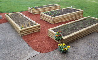 our new raised beds, diy, gardening, raised garden beds, woodworking projects