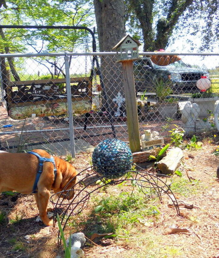 "WoFat Checks out the new addition to ""his"" play area"