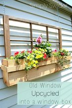 a new upcycle idea for old windows, flowers, gardening, repurposing upcycling, windows