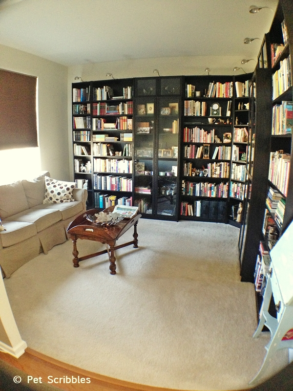 Library home office makeover hometalk for Home office living room ideas