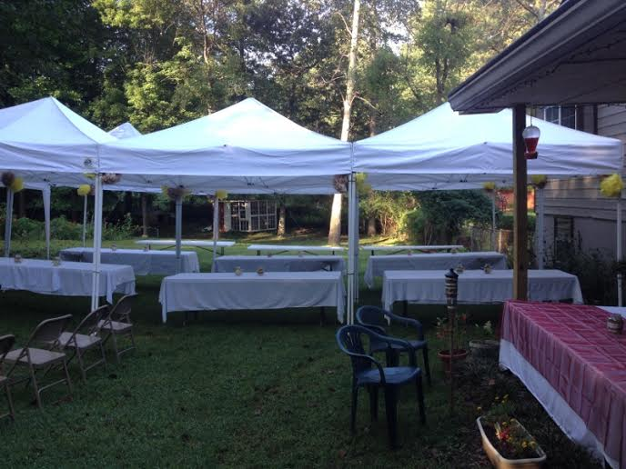 Wedding In My Backyard On A Budget Hometalk