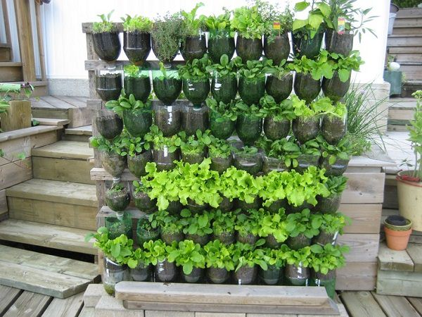 13 Plastic Bottle Vertical Garden Ideas Soda Bottle Garden – Diy Vertical Garden Plans