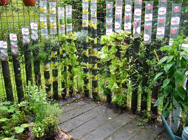 13 plastic bottle vertical garden ideas soda bottle garden, container gardening, diy, gardening, go green, homesteading, repurposing upcycling
