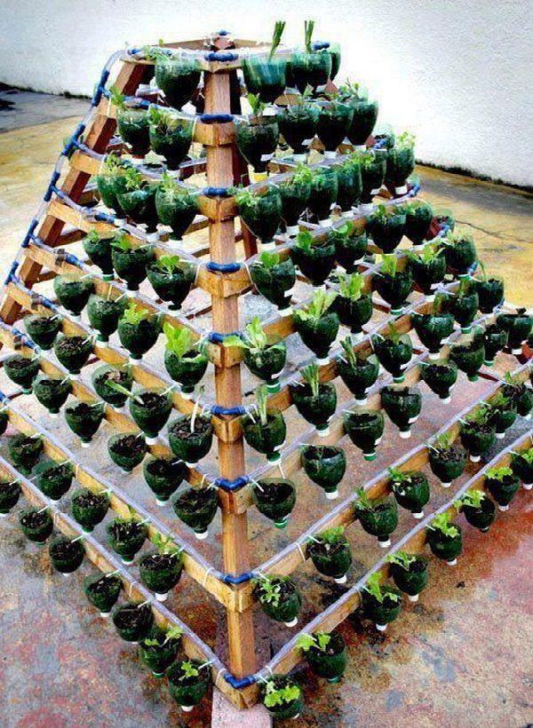 13 Plastic Bottle Vertical Garden Ideas | Soda Bottle Garden | Hometalk