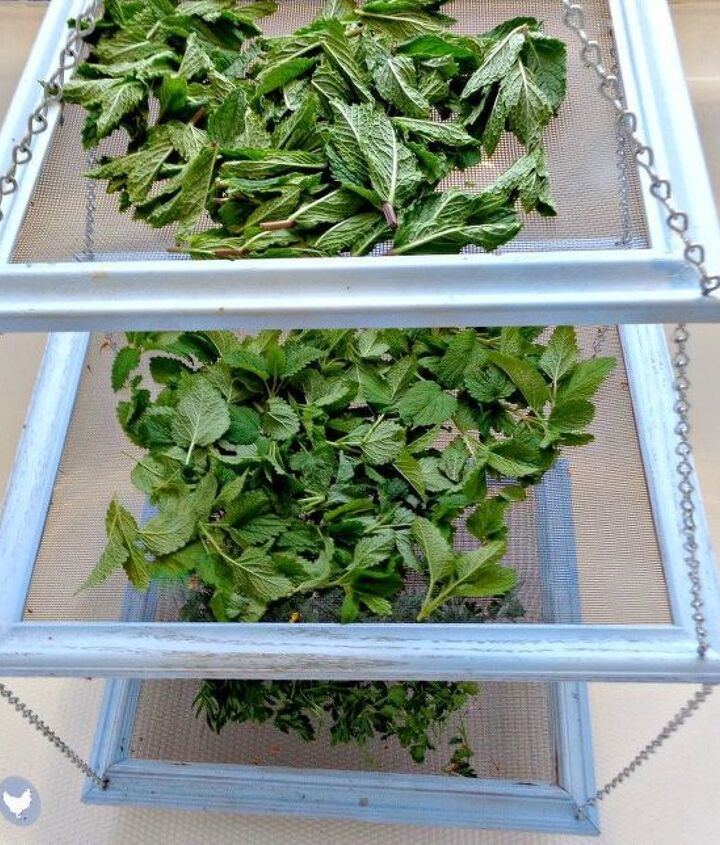s 23 awesome things you didn t know you could do with old picture frames, crafts, repurposing upcycling, Make an easy herb drying rack