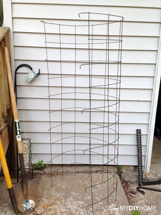 DIY Tomato Cages - Save the Maters! | Hometalk