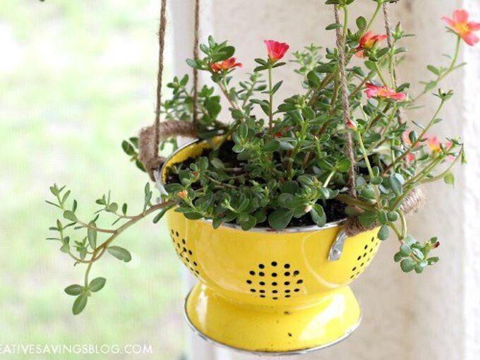 diy colander planter, container gardening, gardening, repurposing upcycling