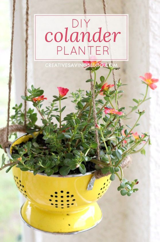diy colander planter, container gardening, gardening, repurposing upcycling
