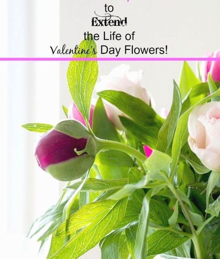 how to extend the life of your valentine s day flowers valentinesday, flowers, gardening, how to, seasonal holiday decor, valentines day ideas
