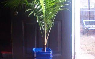 diy planter, container gardening, gardening