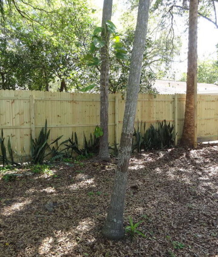 wood fence upgrade, diy, fences, home improvement, outdoor living, woodworking projects