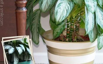 diy painted planter, container gardening, crafts, gardening