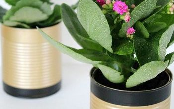 diy recycled tin can flower pots, container gardening, crafts, gardening, repurposing upcycling