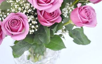 Tips to Make Your Valentine's Day Roses Last Longer