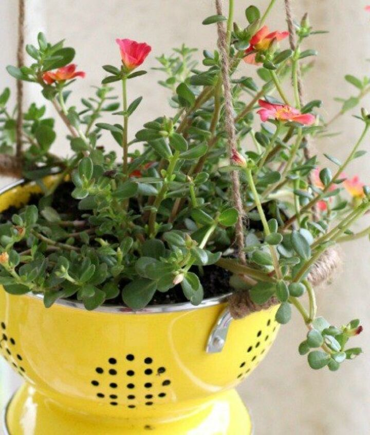 s 12 awesome ideas for gardeners who are impatient for spring, gardening, Upcycle containers for the garden