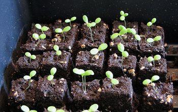 soil blocking economical space saving seed starting, gardening, how to