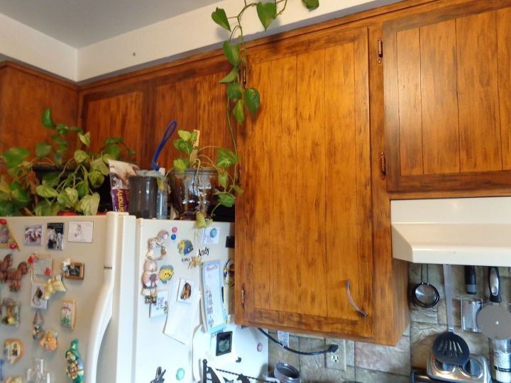 refinish ugly maple cubboards, doors, kitchen cabinets, kitchen design, painting, rustic furniture