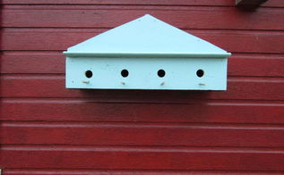 window boxes not just for flowers any more, animals, pets animals, repurposing upcycling