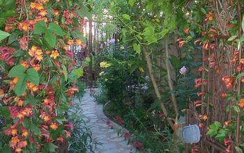 9 Budget Ways to Make Your Walkway Look Even Better Than Last Year