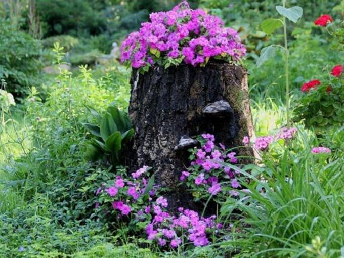 how i hide or camouflage a tree stump
