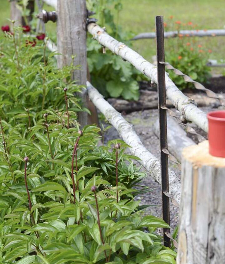 The bare bones of the fence: posts & railings