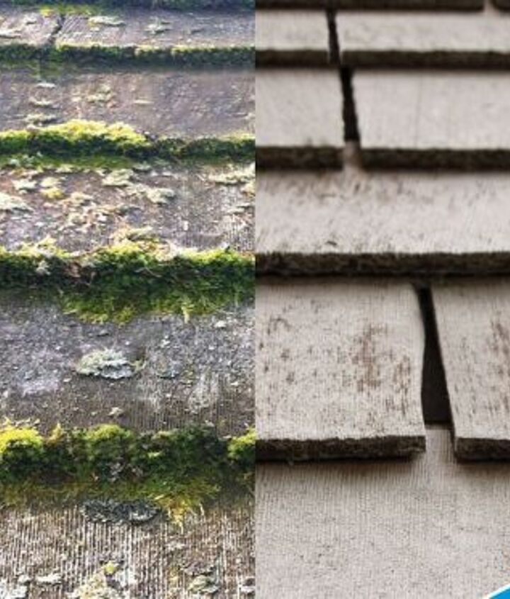 remove moss easy as pie, cleaning tips, concrete masonry, how to
