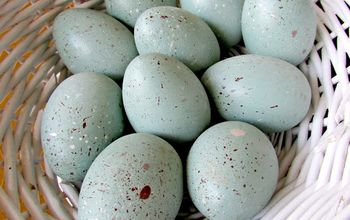 DIY Wood Speckled Robins Eggs