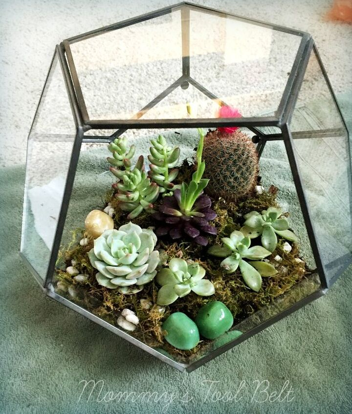 diy hanging globe and geo terrariums, diy, gardening, home decor, succulents, terrarium