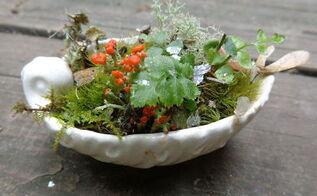 miniature fairy garden ship, gardening