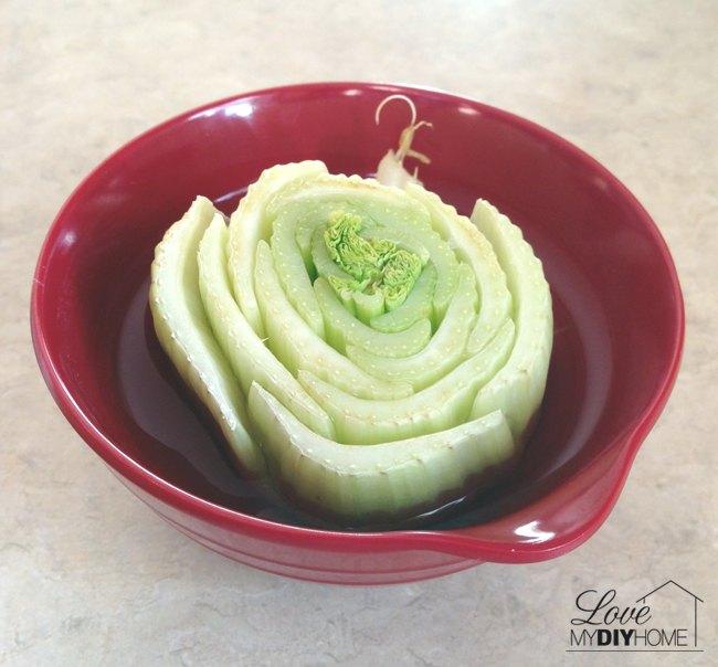 celery on your windowsill lettuce rejoice, diy, gardening