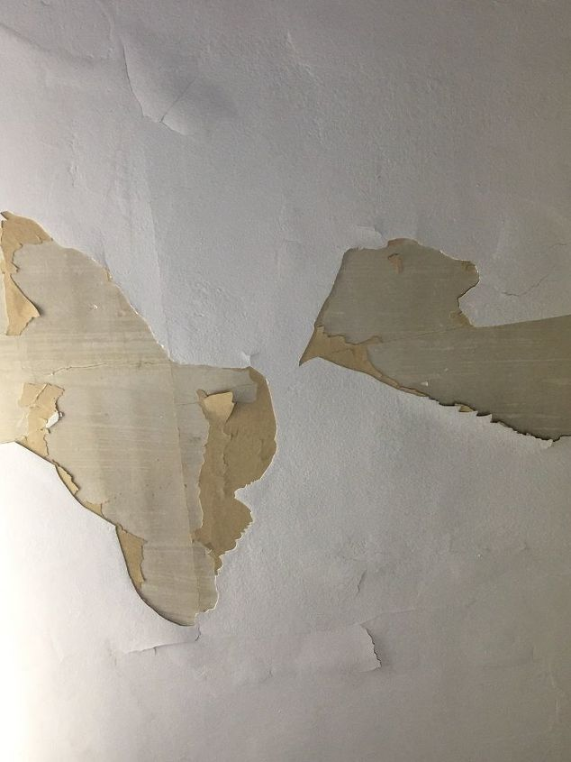 q paint pealing fix on a budget what would you do, home maintenance repairs, interior home painting, major home repair, painting, Ceiling