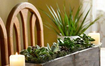 diy spring succulent centerpiece, container gardening, flowers, gardening, succulents