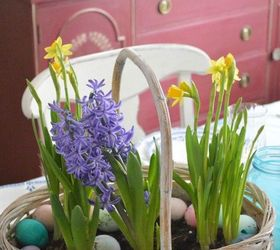 Spring Basket Bulb Garden, Chalk Paint, Container Gardening, Crafts, Easter  Decorations,