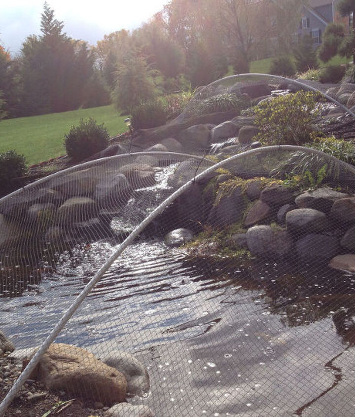 how to clean a pond, cleaning tips, how to, ponds water features