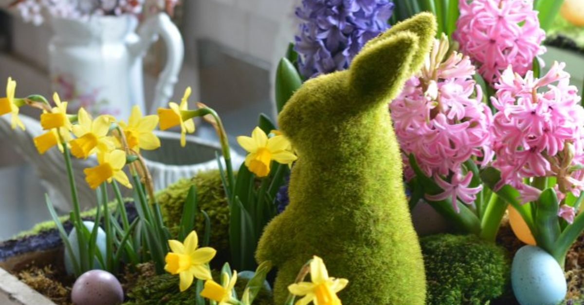 Tabletop Gardening And Spring In A Drawer Hometalk