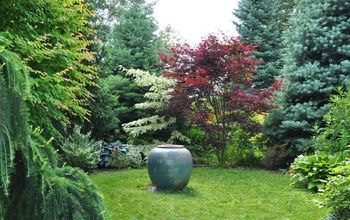 Garden Before & Afters