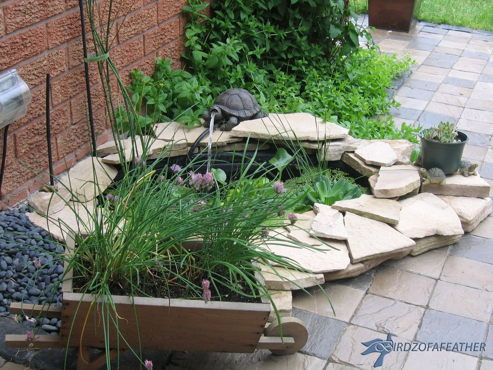 10 mini water features to add zen to your garden hometalk for Small garden pond with fountain