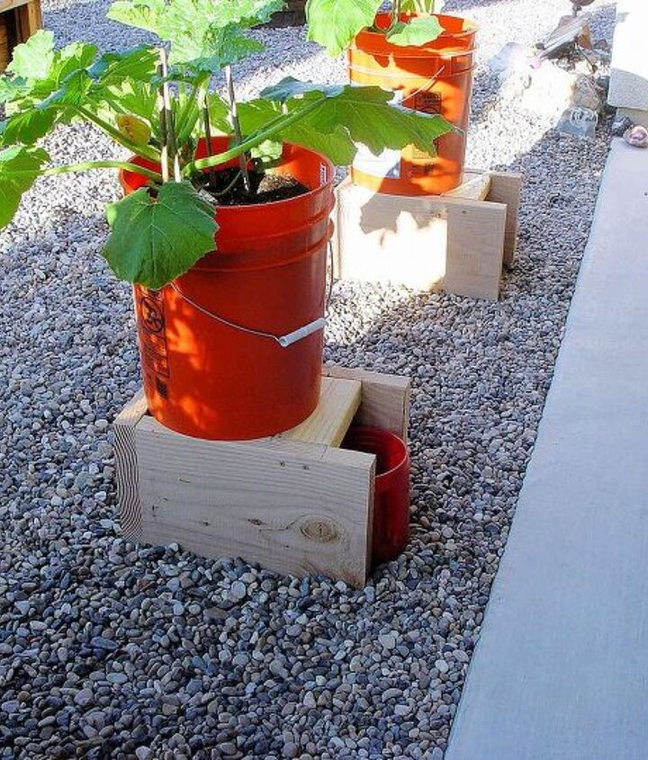 s 20 low maintenance container gardens for beginners, container gardening, gardening, Plant in buckets to use less water