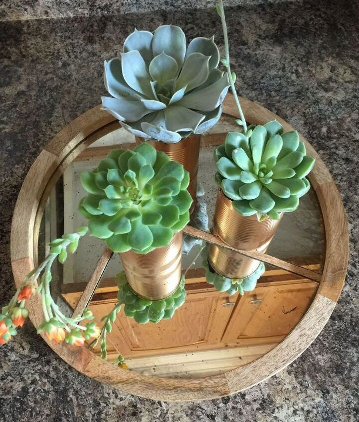 s 20 low maintenance container gardens for beginners, container gardening, gardening, Upcycle empty cans into easy succulent pots
