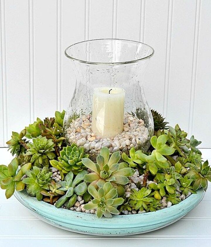 s 20 low maintenance container gardens for beginners, container gardening, gardening, Make a simple mix of succulents for the table