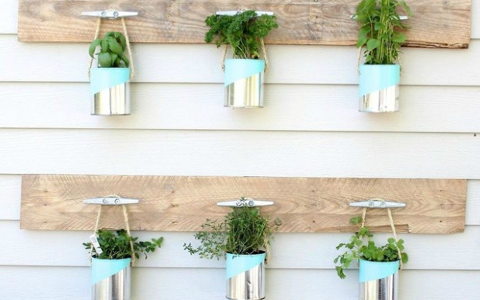 Hang your favorite herbs in a sunny spot