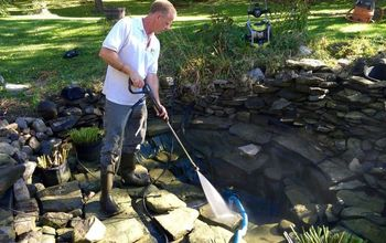 How To Correctly Clean A Fish Pond
