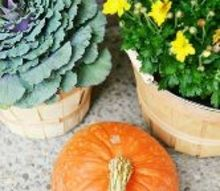 fall front porch natural plants cat tails, crafts, porches, seasonal holiday decor