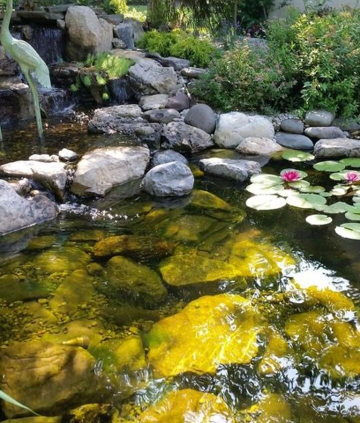 will a skimmer reduce maintenance for my small pond, gardening, ponds water features