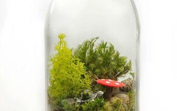 diy tea rrarium, crafts, gardening, how to, repurposing upcycling, terrarium